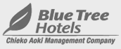 Blue Tree Hotels